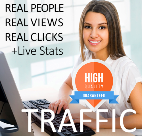 60,000 hits for your website -- real web traffic 60 000 + Live stats