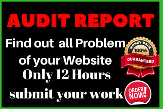 do seo audit reports