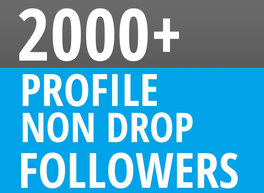 Start Instant 2000 Profile Followers HQ NON DROP SEO Service
