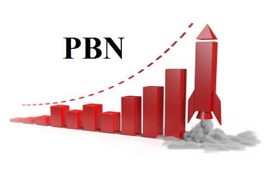 Build 10 High PR PA DA TF CF 40+ to 15, PBN Backlink...