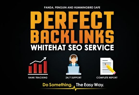 24hr Rank Higher in Google - Perfect High PR SEO Contextual Backlinks