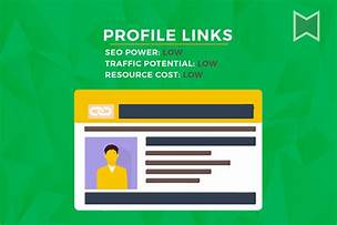 create 30 link building profiles for your site.