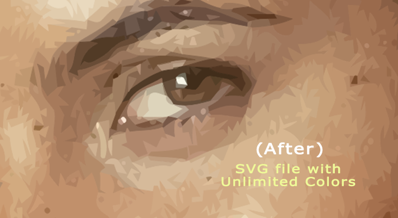 To vectorize Your Logo, Portrait, And Photo Professionally