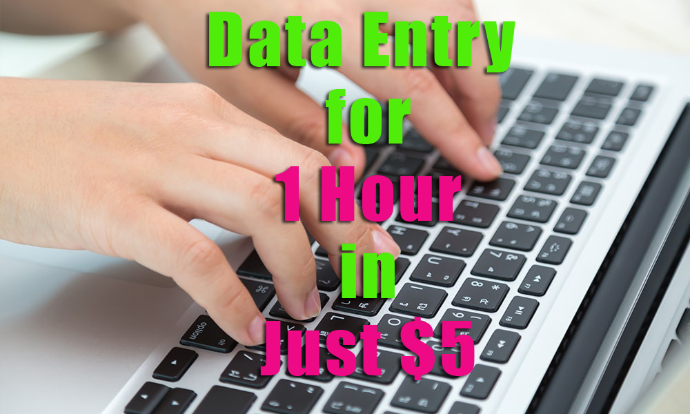 do data entry for 1 hour