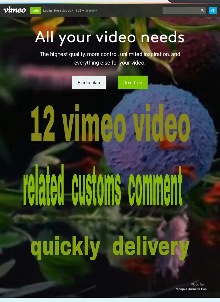 12 vimeo video related  customs  comment  fast delivery
