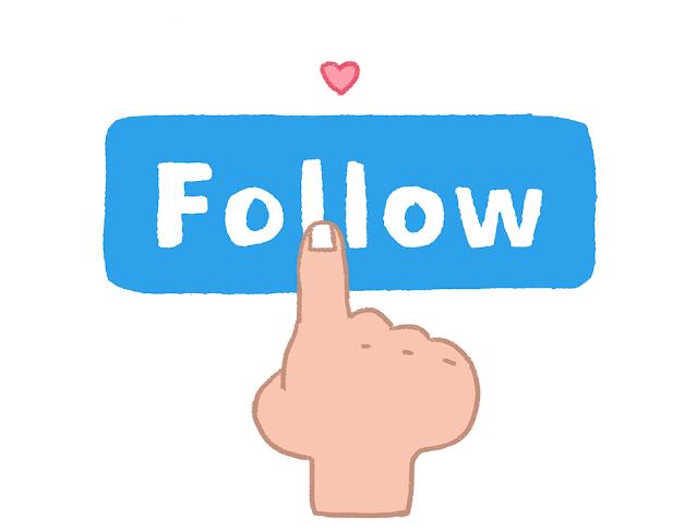 social 1000 follower / like