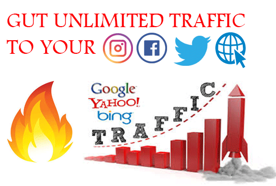 Get more than 80k visitors to your website or social media  for 12 months