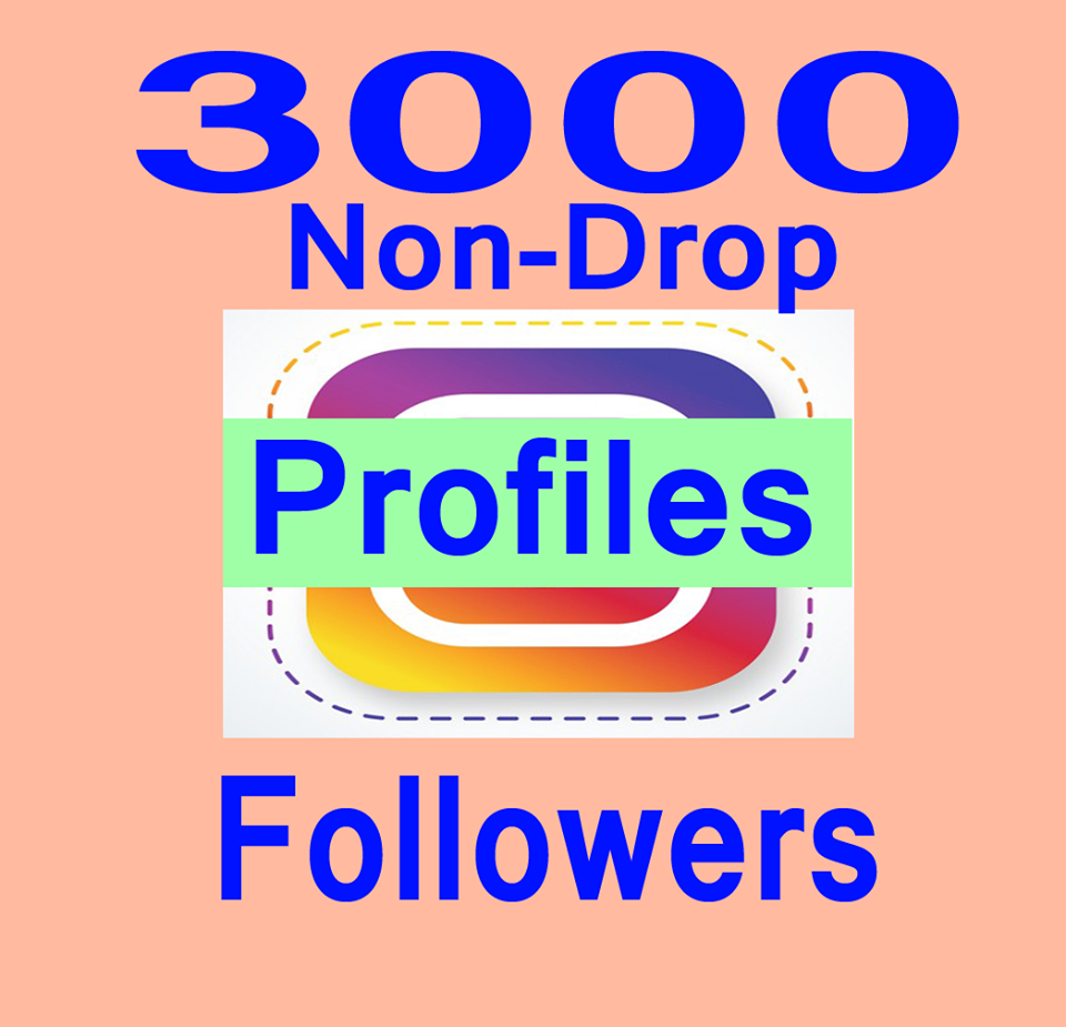 Non Drop 3000+Profile Followers In 3-4H