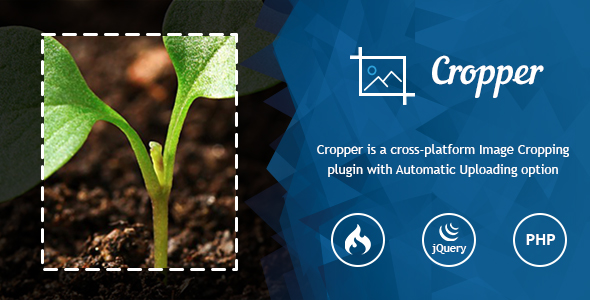 Ultra Image Cropper – Plugin built on CorePHP and CodeIgniter