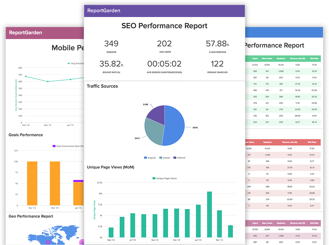 Review Your Website And Write A SEO Report