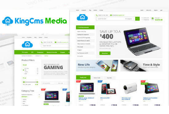 Design Ecommerce Website In 24 Hours With Free Hostin...