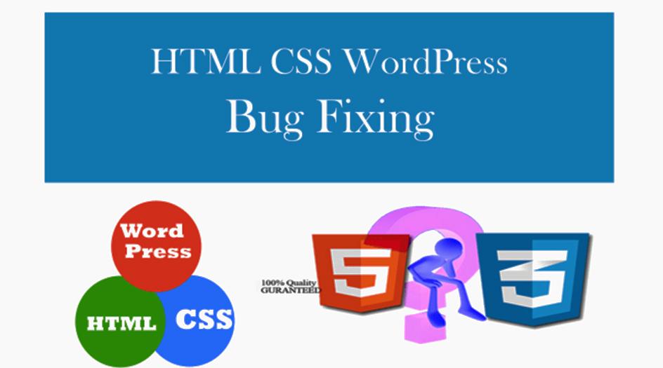 I will bug fixing and theme customization of wordpress