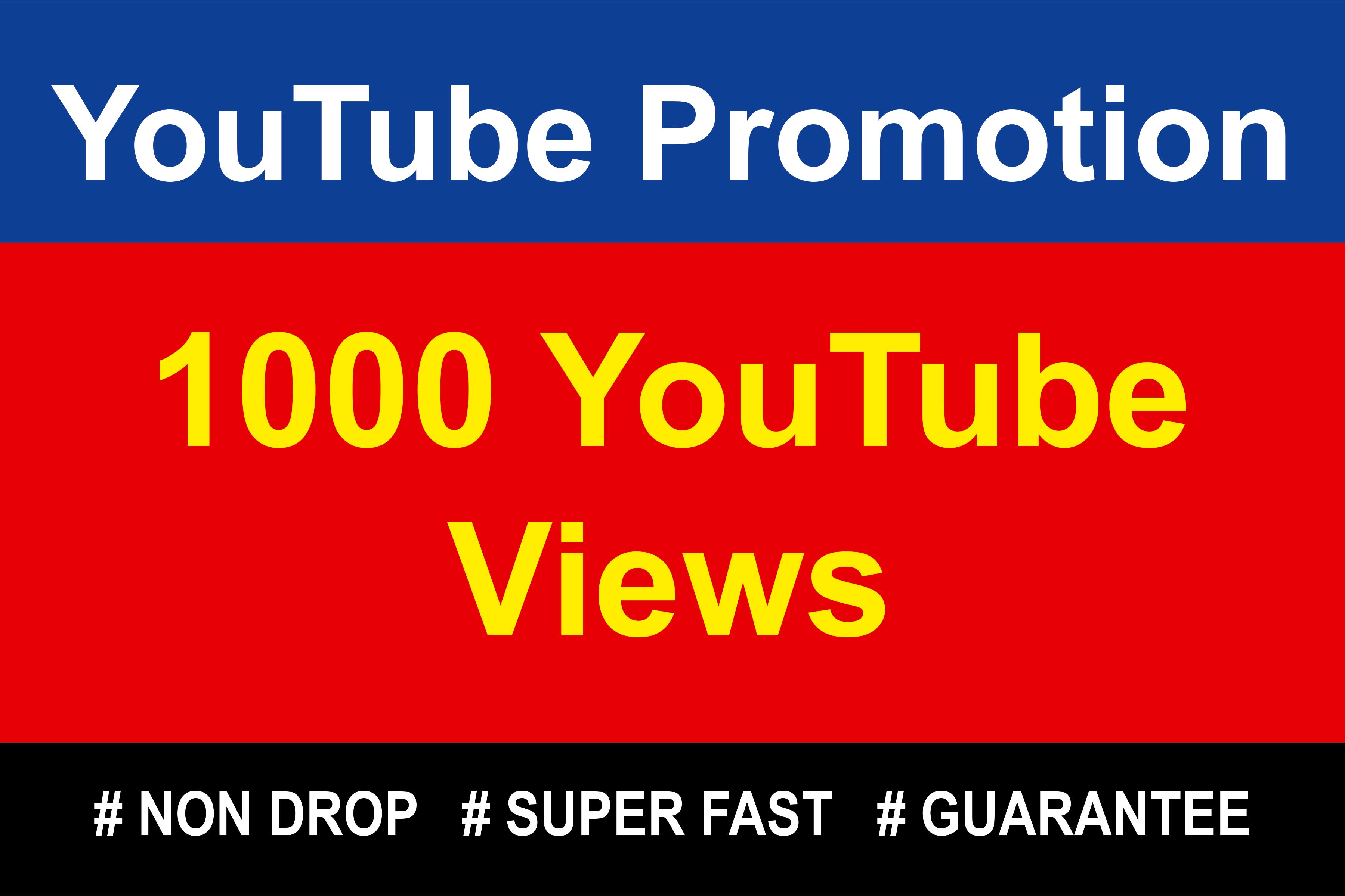 Guaranteed 1000 YouTube Video Marketing & Promotion