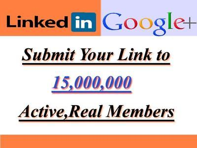 Promote Your link to 15,000,000 LinkedIn and Google Plus members