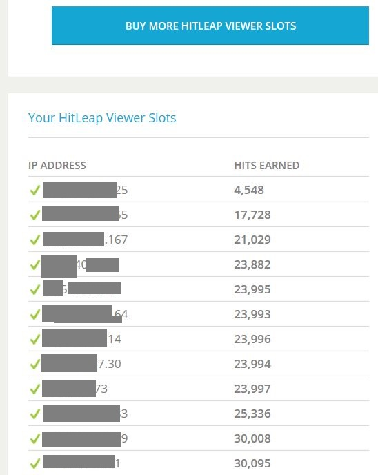 Run Your HitLeap Viewer On My Servers For 30 Days