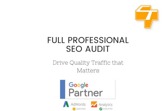 Full Professional SEO Audit
