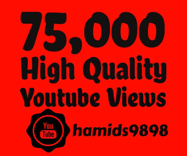 add Super Fast 75,000+ High Quality Youtube views