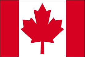 give 1000 visitors daily from Canada