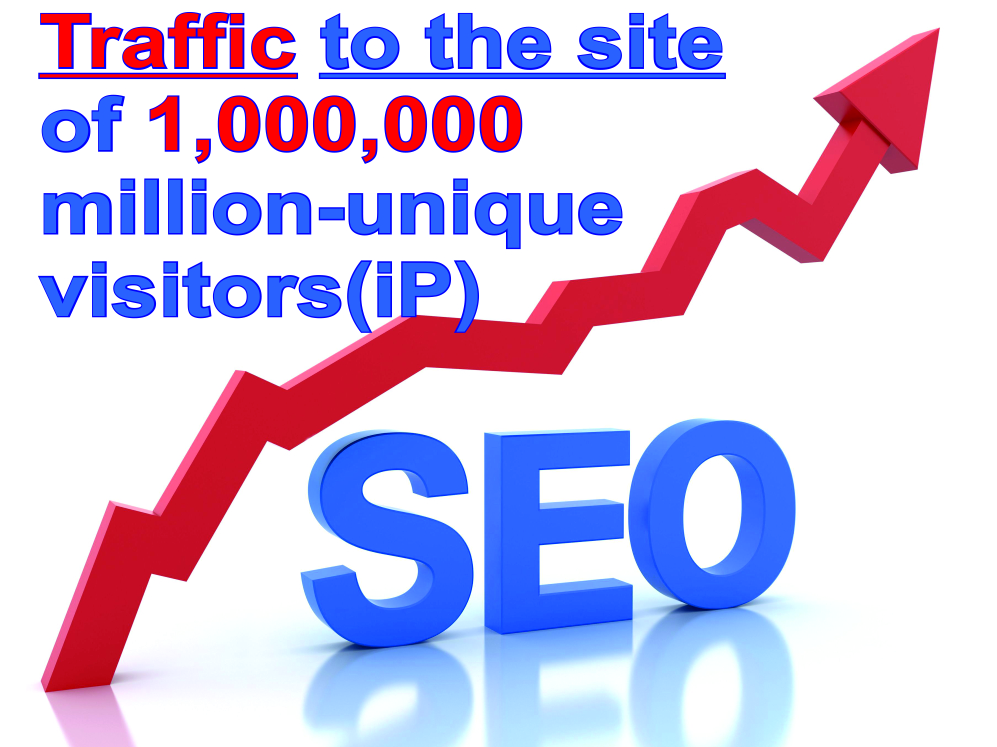 Traffic to the site of 1,000,000 million unique visitors (ip)