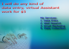 do data entry, excel and any kind of virtual assistan...