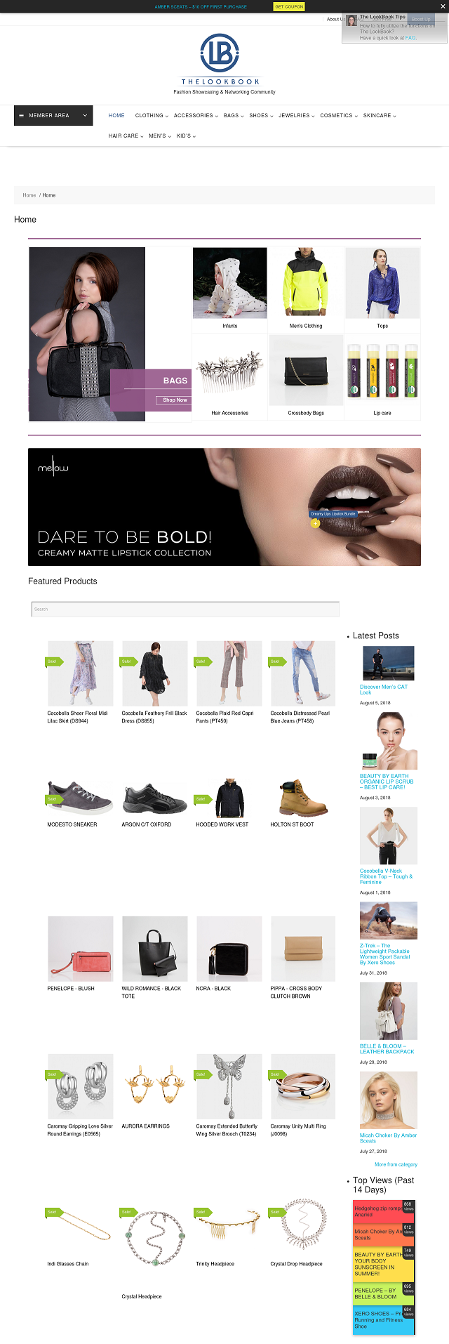 upload 20 products to showcase on The LookBook with 2 extra free boost-up posts