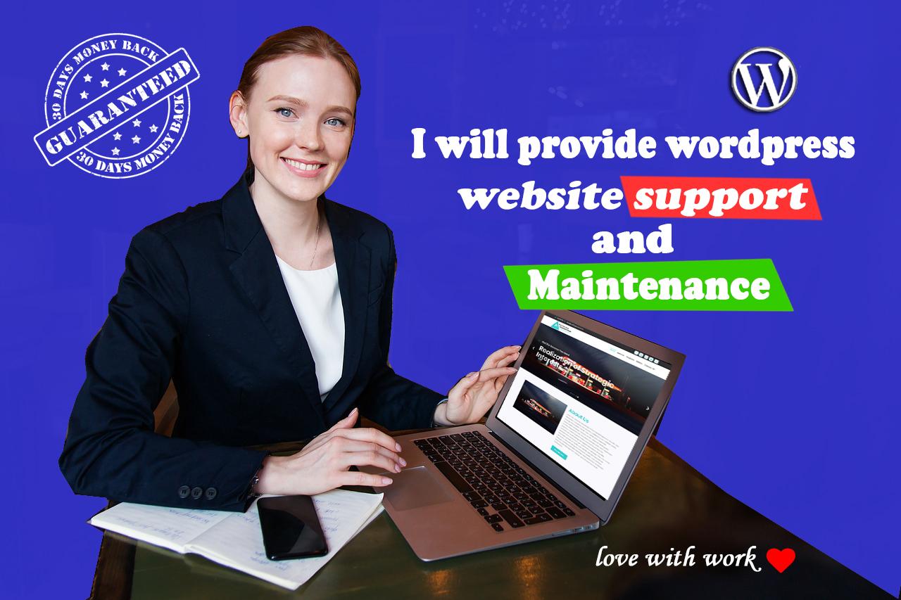 I will build a professional WordPress business website