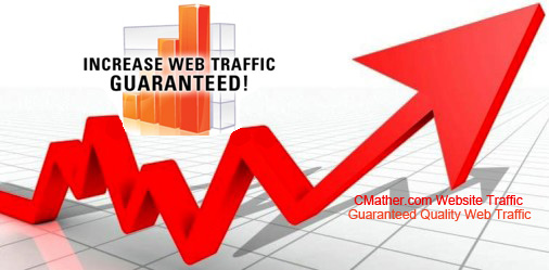 Get 1.000 visitors to your site in 24 hours