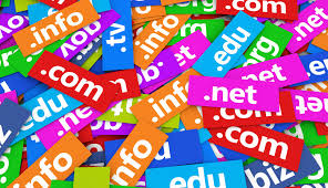 Domain Name registrations/ website name