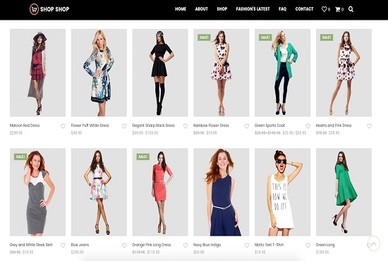 I will build professional eCommerce website for low cost