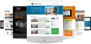 Design Wordpress Website For You