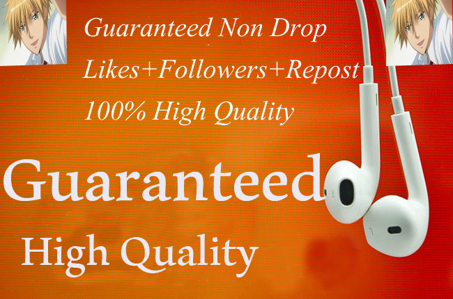 High Quality Real 300+Music promotion package fast,non drop,safe Instant