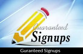 Provide you 20 real signups