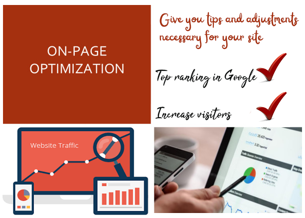 Give you tips and adjustments necessary for your entire website On-Page SEO