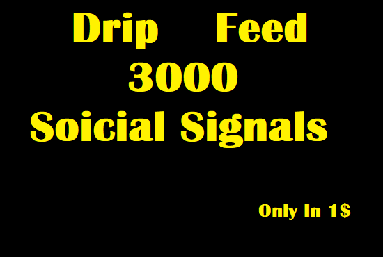 Drip Feed 3000 Sustainable Social Signals