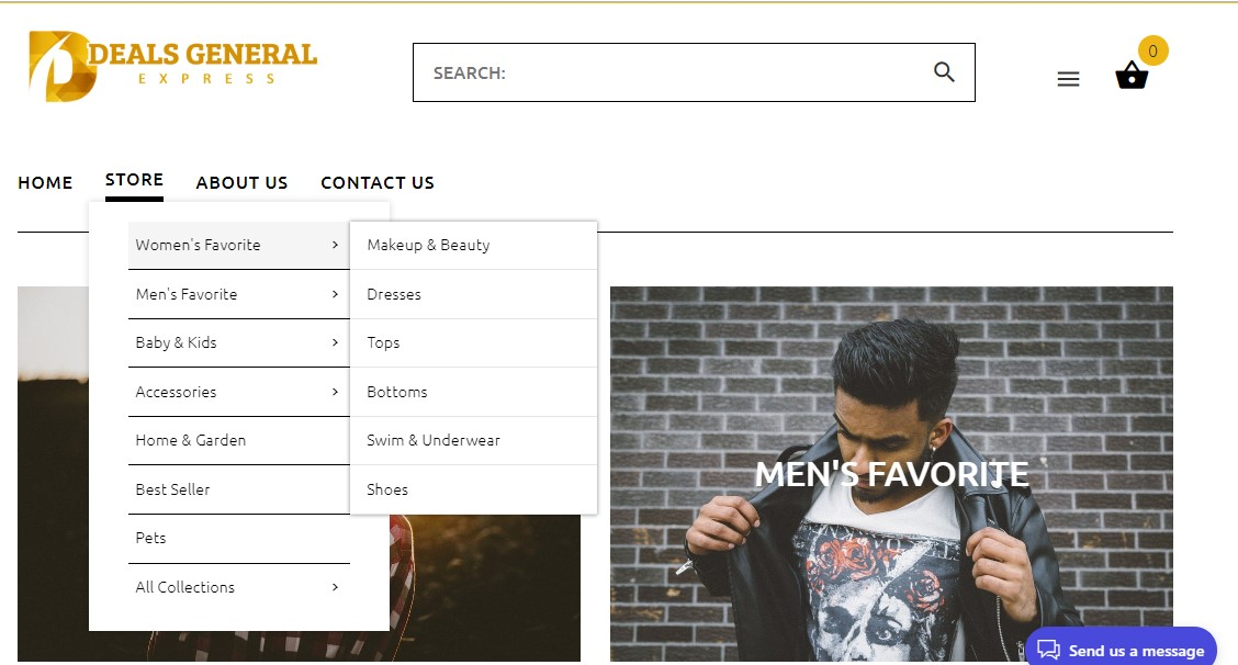 Shopify Store , Shopify Website