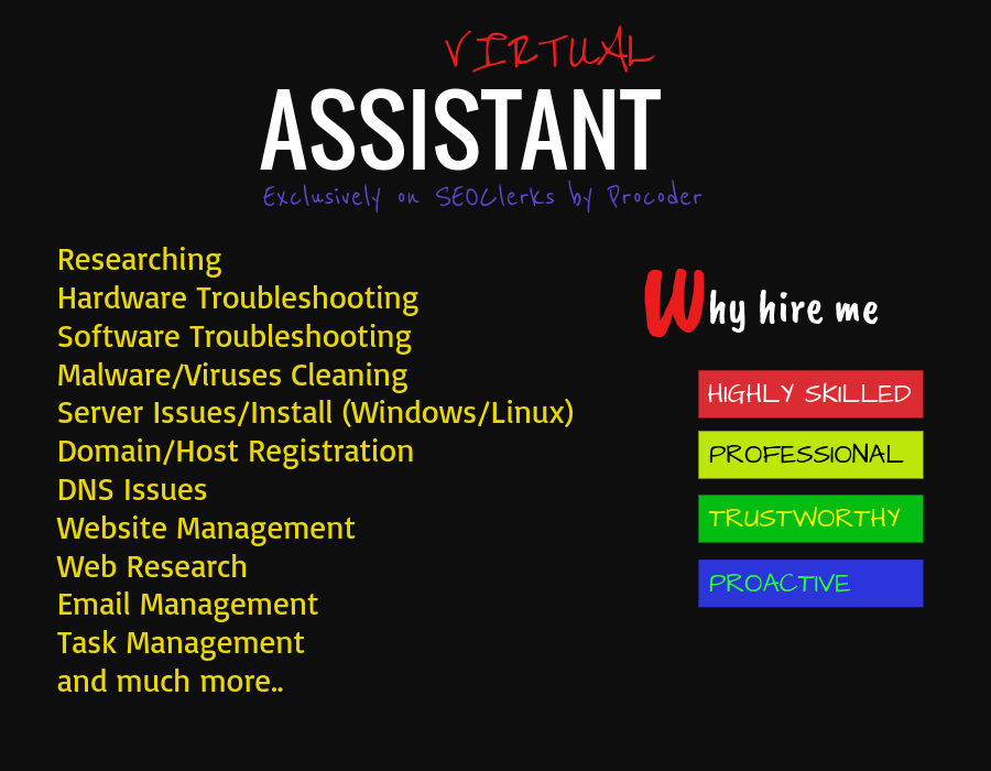 Highly Skilled Virtual Assistant