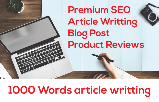 Do Fantastic SEO article writting for Google