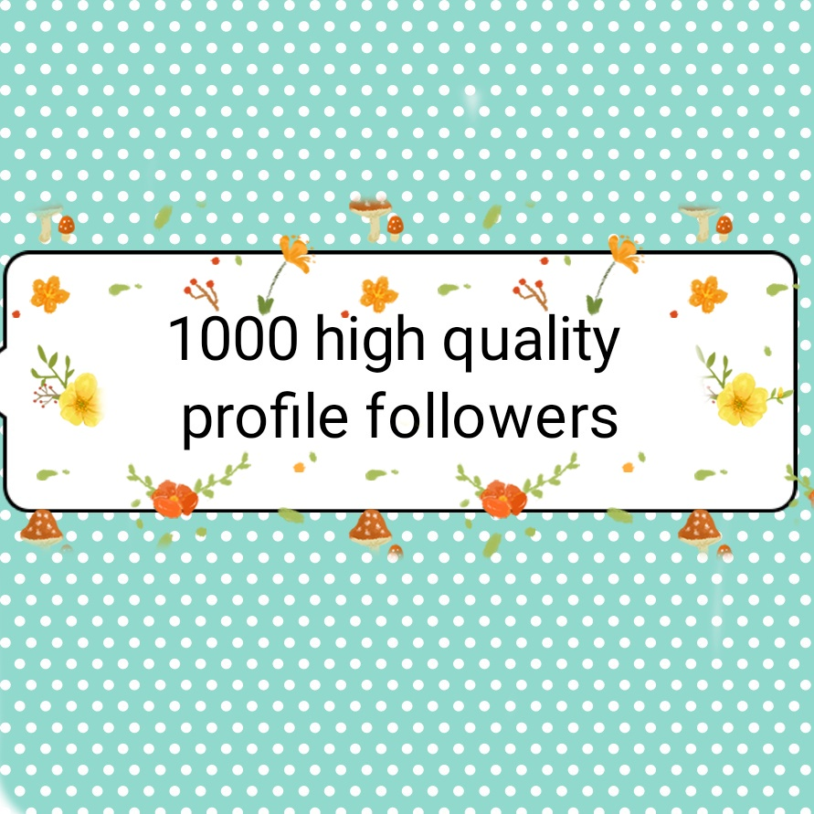 1000+ high quality profile followers fast delivery