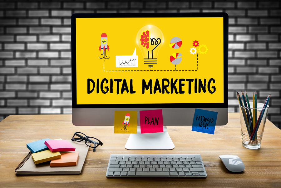 Provide a tailored Digital Marketing Strategy for your Local or Online Business
