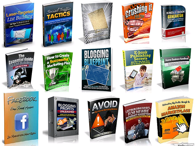 VIRTUAL MARKETER FOR 15 PER MONTH + 500 000 TRAFFIC