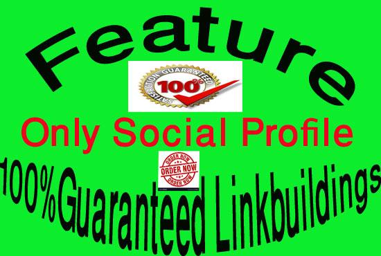100% Guaranteed 300 Social Profile Backlinks/Link building