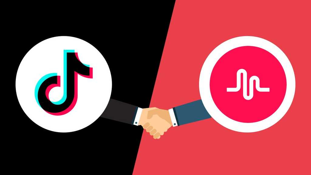 Get 1000 TikTok Musically Fans Instant Delivery within 24 hours
