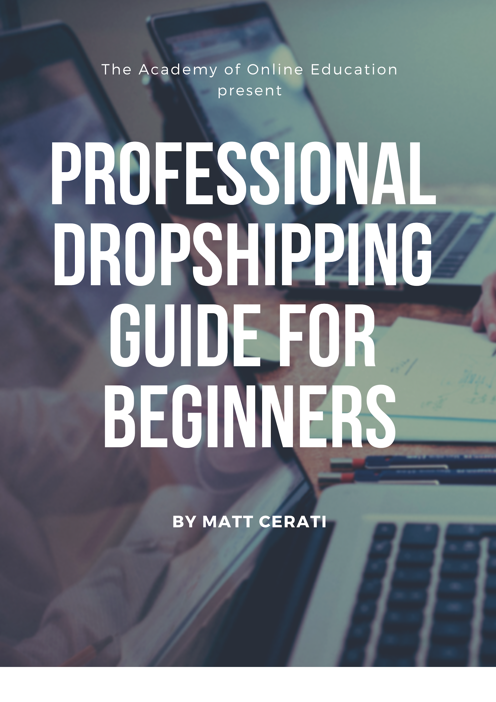 professional dropshipping guide for beginner