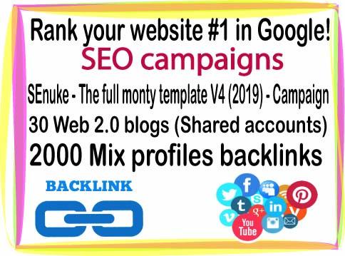 Rank your website- SEnuke - The full monty template V4 (2019)-30 Web 2.0 blogs-2000 Mix profiles backlinks