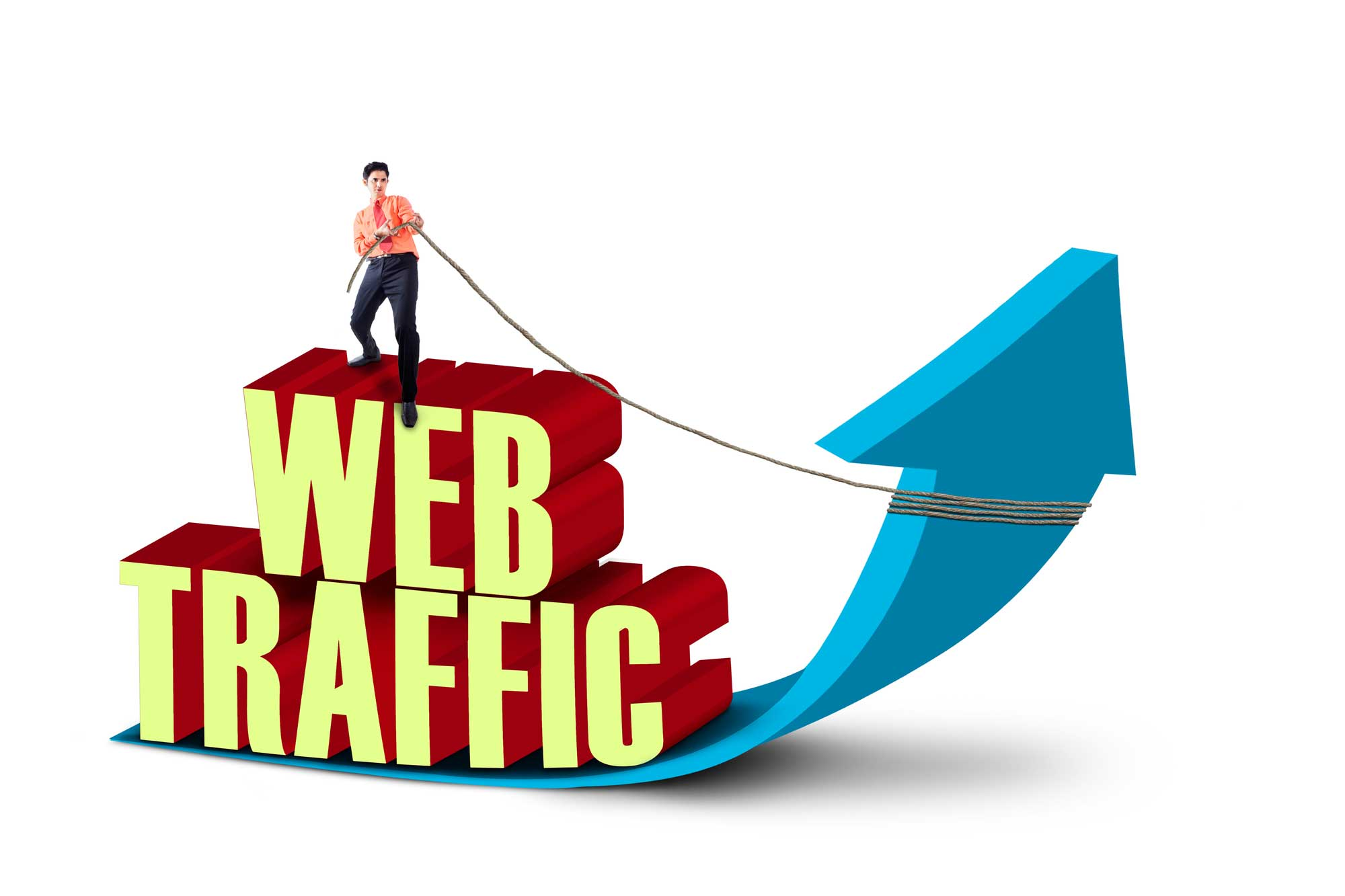 Drive Real Web Traffic For 30 Days To Your Website or Blog