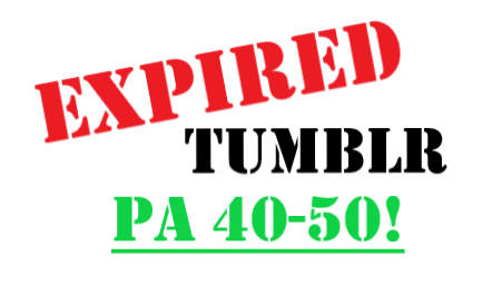 Get 2 Registered very strong expired tumblr with PA 70+