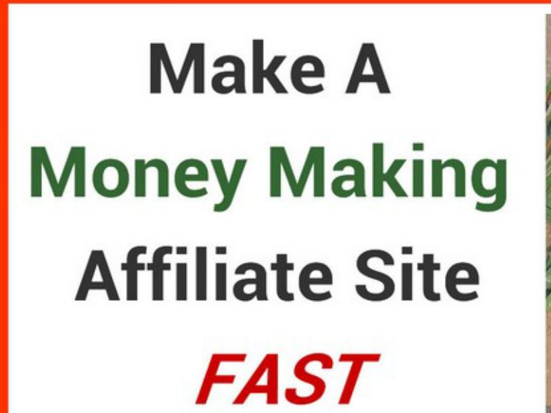 build wordpress autoblog autopilot money making websi...