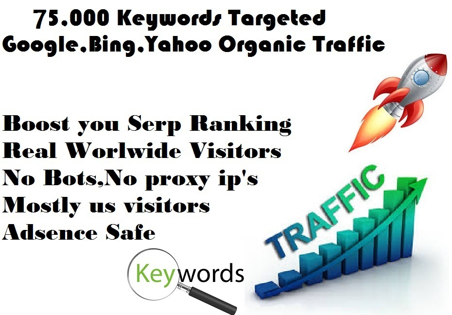 Drive 75,000 Google Keyword targeted Real traffic with Low Bounce Rate