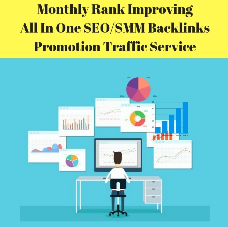 Done For You Rank Improving All In One SEO/SMM Backli...