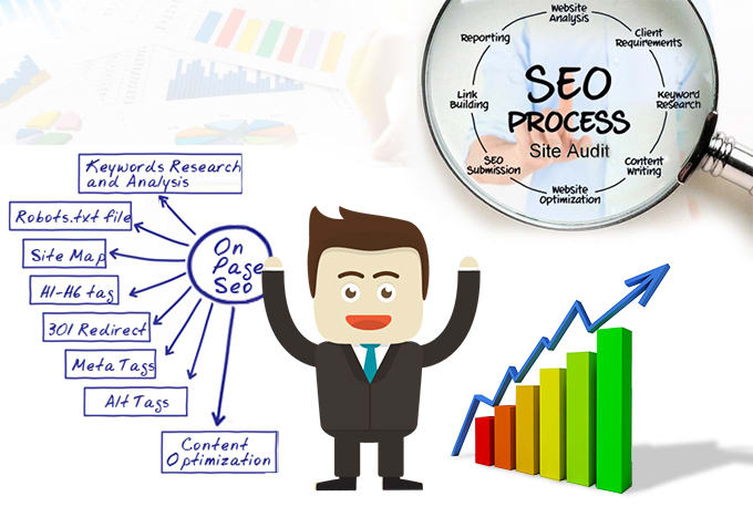 do in depth SEO website audit and create a marketing strategy for higher results